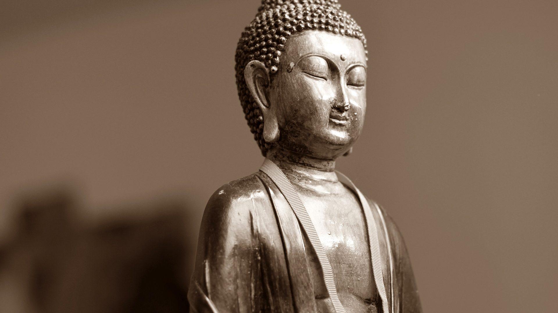 Wil u zelf de beste worden in massages? Masumi biedt opleiding massage voor beginners en gevorderden. Opleiding traditionele Thaise massage in maart. In groep of prive. Ook voor duomassage. Bel voor meer info.